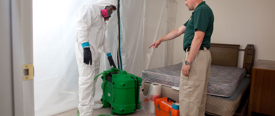 Sioux Falls, SD mold removal process